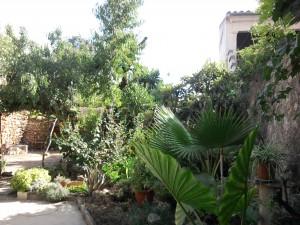 Jardin de los masajes Campos